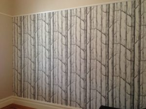 ColourFuse Wallpaper Installation - Birch by Cole and Son